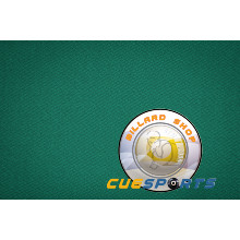 Billard Tuch Hainsworth Elite Pro 700, 198 cm